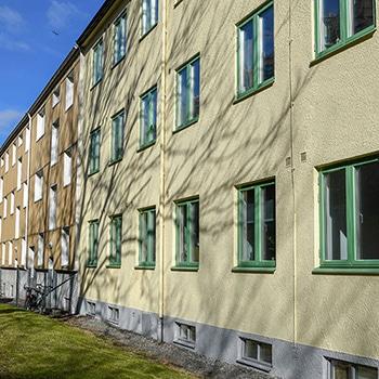 bild på gul fasad med gröna fönster